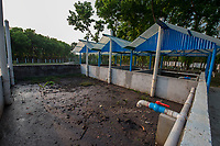 Bangladesh, Jhenaidah. Fecal Sludge Treatment plant, where the waste is disposed of through SNV. Plant growth through the compost.