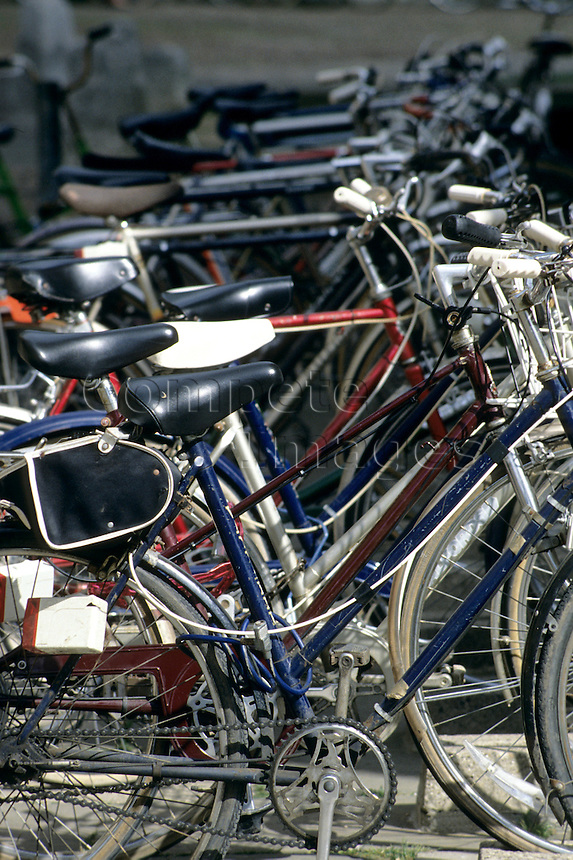 Row of recreational bikes