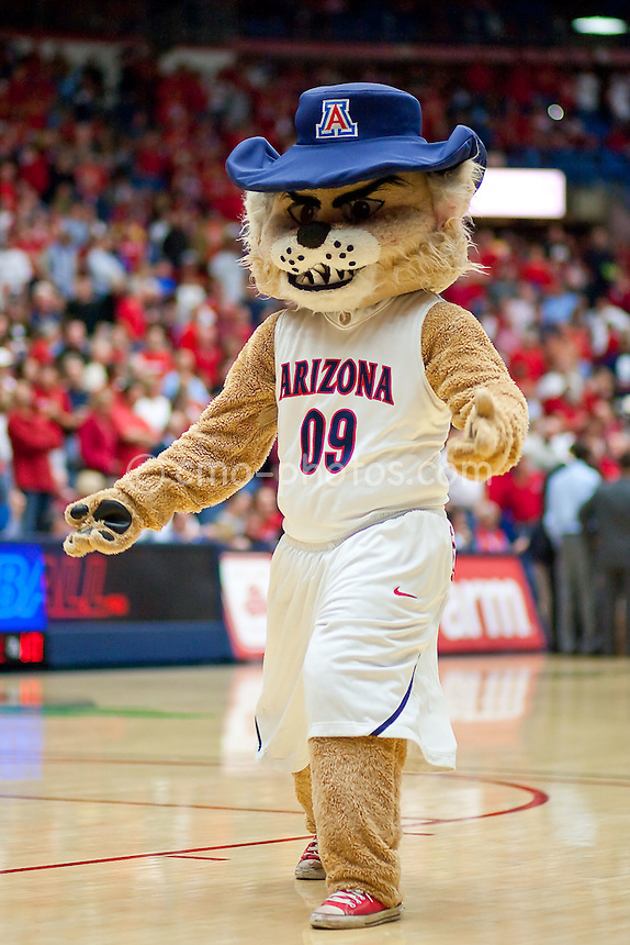 Jan 21, 2009; Tucson, AZ, USA; Arizona Wildcats Mascot, Wilbur, in the second half of a game against the Arizona State Sun Devils at the McKale Center.  The Sun Devils won the game 53-47.