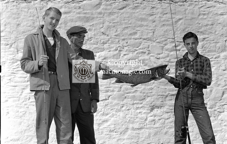 An old large salmon is caught on Killarney's lakes..Picture by Harry MacMonagle.macmonagle archive photo