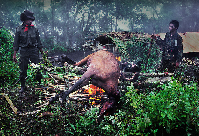 Falintil soldiers roasting a horse.<br />