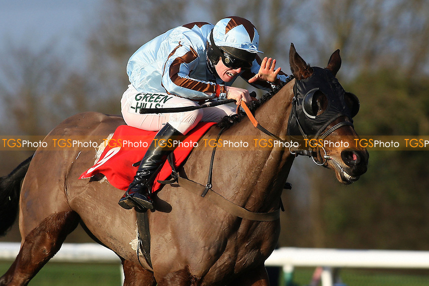 Theologist ridden by Joshua Moore on the way to winning the Pertemps Handicap Hurdle (Series Qualifier) at Huntingdon Racecourse, Brampton, Cambridgeshire - 27/01/12 - MANDATORY CREDIT: Gavin Ellis/TGSPHOTO - Self billing applies where appropriate - 0845 094 6026 - contact@tgsphoto.co.uk - NO UNPAID USE.