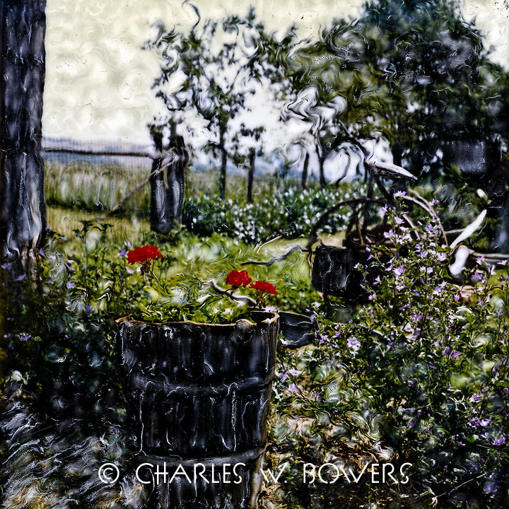 A Tuscan farm family repurposes a used wine keg for their garden of geraniums. Flowers have meaning to everyone.<br /> <br /> -Limited Edition of 50 Prints