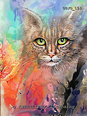 Marie, REALISTIC ANIMALS, REALISTISCHE TIERE, ANIMALES REALISTICOS, paintings+++++,USJO153,#A# ,Joan Marie cat