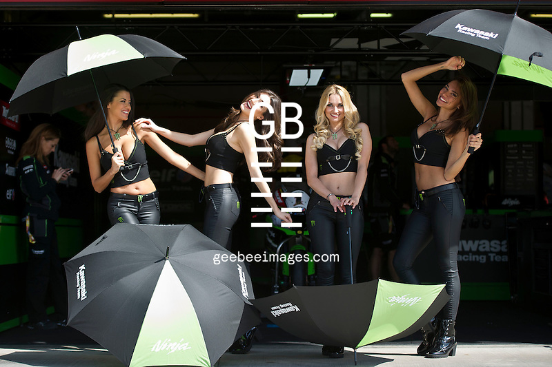 2016 FIM Superbike World Championship, Round 05, Imola, Italy, 29 April - 1 May 2016, Monster Energy Grid Girls