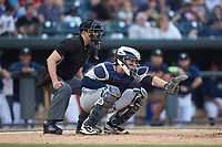 Charleston RiverDogs catcher Donny Sands (15) sets a target as home plate umpire Forrest Ladd looks on during the game against the Columbia Fireflies at Spirit Communications Park on June 9, 2017 in Columbia, South Carolina.  The Fireflies defeated the RiverDogs 3-1.  (Brian Westerholt/Four Seam Images)