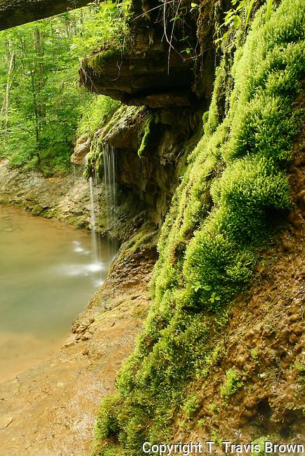 Mossy Waterfall Charlestown State Park