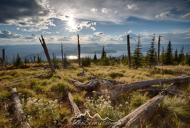 Idaho, North, Bonner County, Coolin. A September view over Priest Lake from Sundance Mountain in the Selkirk Range of the Kaniksu District of the Idaho Panhandle National Forest.