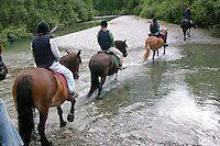 Wanderritt mit Pony in Nord-Norwegen, Skandinavien, Ritt durch natürliche Flüsse, Wander-Ausritt, Ausritt, Reiten