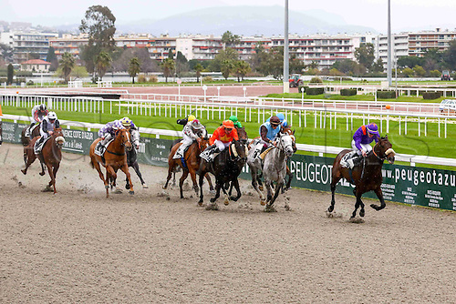 27.02.2016. Cagnes sur Mer, France. 3rd Race of the day Prix Jacques Bouchara. 3 TARATCHI,(winner) A. HAMELIN<br /> 7 RAKHSH,(2nd) A. BADEL<br /> 18 MALANDRINO,(3rd) R. THOMAS<br /> 13 HEAVENSONG, P-C BOUDOT<br /> 2 WALEC, R-C MONTENEGRO