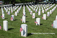 65095-01715 Flags on Memorial Day at Jefferson Barracks National Cemetery, St Louis, MO