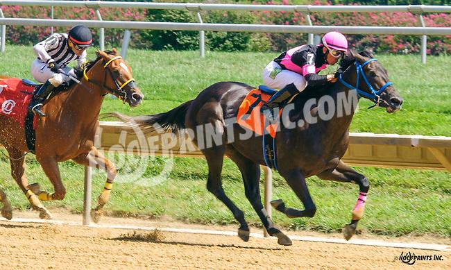 Regere winning at Delaware Park on 8/24/16