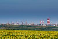 Трубы газового и гелиевого заводов на фоне поля подсолнухов под Оренбургом