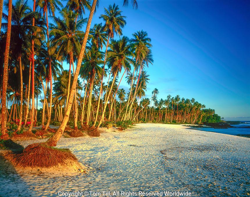 Return to Parardise Beach, Samoa, South Pacific Ocean