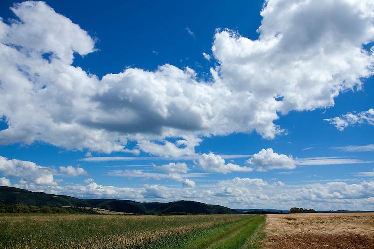 Europa, DEU, Deutschland, Rheinland-Pfalz, Mosel, Terrassenmosel, Untermosel, Lehmen-Moselsuersch, Agrarlandschaft, Himmel, Wolken, Kategorien und Themen, Natur, Umwelt, Landschaft, Jahreszeiten, Stimmungen, Landschaftsfotografie, Landschaften, Landschaftsphoto, Landschaftsphotographie, Wetter, Himmel, Wolken, Wolkenkunde, Wetterbeobachtung, Wetterelemente, Wetterlage, Wetterkunde, Witterung, Witterungsbedingungen, Wettererscheinungen, Meteorologie, Bauernregeln, Wettervorhersage, Wolkenfotografie, Wetterphaenomene, Wolkenklassifikation, Wolkenbilder, Wolkenfoto....[Fuer die Nutzung gelten die jeweils gueltigen Allgemeinen Liefer-und Geschaeftsbedingungen. Nutzung nur gegen Verwendungsmeldung und Nachweis. Download der AGB unter http://www.image-box.com oder werden auf Anfrage zugesendet. Freigabe ist vorher erforderlich. Jede Nutzung des Fotos ist honorarpflichtig gemaess derzeit gueltiger MFM Liste - Kontakt, Uwe Schmid-Fotografie, Duisburg, Tel. (+49).2065.677997, archiv@image-box.com, www.image-box.com]
