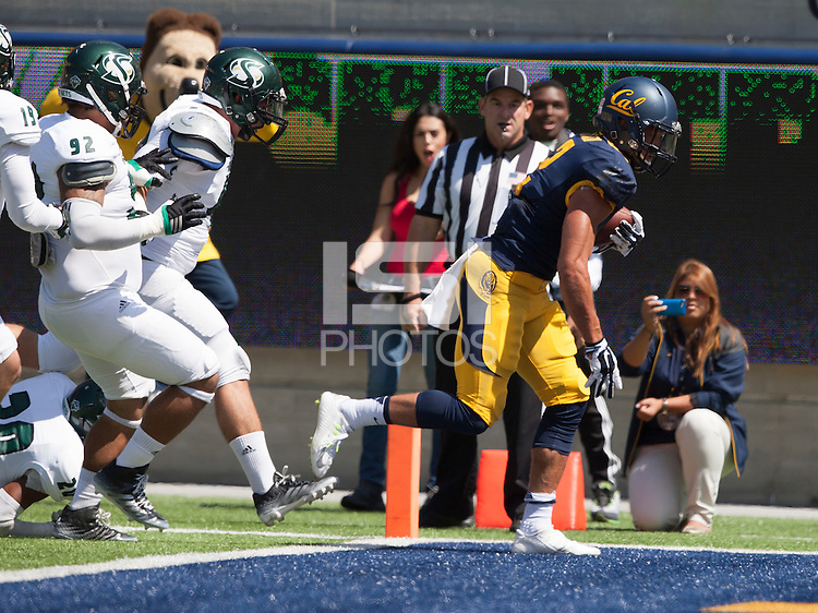 6 September 2014: California Golden Bears' 55-14 victory against Sacramento State Hornets during NCAA football game on Kabam Field at Memorial Stadium in Berkeley, California.