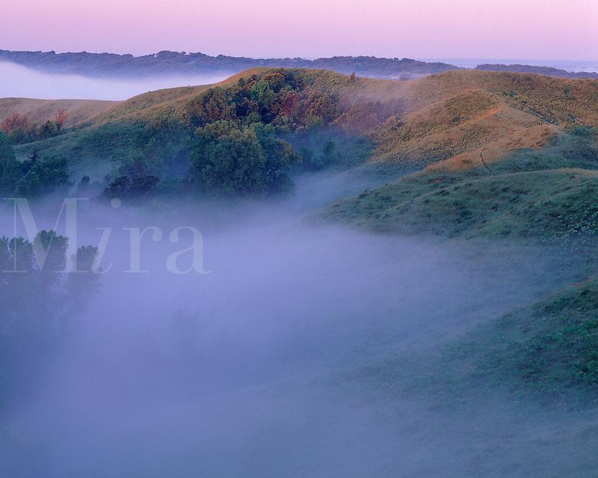 Loess Hills and fog, Sylvan Runkel State Preserve, Monona County, Iowa