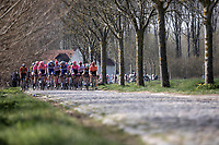 Peloton riding the 'Paddestraat' cobbles. <br /> <br /> 62nd E3 Harelbeke 2019 (1.UWT)<br /> Harelbeke – Harelbeke: 203,9km<br /> ©kramon