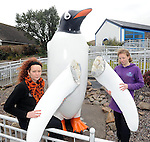 21-03-2013: Suzanne Hall and Michi Richter with the two  flipper wings that  were vandalised and  broken off the fibre glass statue  of a Penguin outside Dingle Oceanworld. 5,000 euro worth  of damage was caused to the 12 foot  high statue. Picture: Eamonn Keogh ( MacMonagle, Killarney)