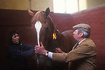 Brian Higham long serving Stud Groom at The Duke of Beaufort Badminton House estate. Seen here with staable girl, 'flaming' a horse to burn down the tiny horse hairs that are sticking out so as to make it look perfect.