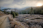 Idaho, South Central, Stanley. A tributary of the Middle Fork of the Salmon River winds its way through a frosty meadow on an autumn morning.
