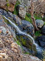 Water cascades down moss-covered rocks in Upper Hot Spring Canyon in the Cleveland National Forest.  Moss and lichen frame the image on the left.
