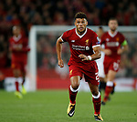 Alex Oxlade-Chamberlain of Liverpool in action during the Champions League Group E match at the Anfield Stadium, Liverpool. Picture date 13th September 2017. Picture credit should read: Simon Bellis/Sportimage