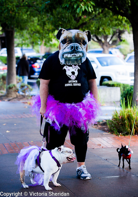 People and their pets gathered for the 2nd Annual Howl-O-Weenie Mutt Strut costume parade and contest at Antioch Animal Services in Antioch, California on Saturday, October 25, 2014.  Photo/Victoria Sheridan