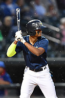 Right fielder Jose Medina (8) of the Columbia Fireflies bats in a game against the Lakewood BlueClaws on Saturday, May 6, 2017, at Spirit Communications Park in Columbia, South Carolina. Lakewood won, 1-0 with a no-hitter. (Tom Priddy/Four Seam Images)