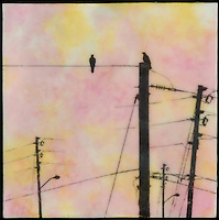 Mixed media encaustic painting with photography of bird on power poles in pinks, yellow, orange.