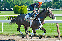 Unstoppable U works five furlongs breezing, in 1:02.05 in preparation for the 2012 GI Belmont Stakes at Belmont Park in Elmont, NY.