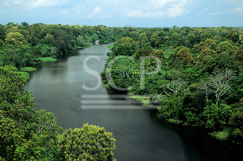 Amazonas State, Brazil. High view of a tributary of the Rio Negro with flowering trees, floating river plants, caboclo house.