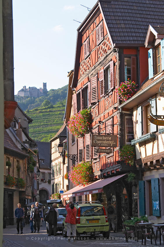 half timbered house ch. st ulrich in back ribeauville alsace france