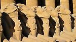 Statues, Luxor, Egypt