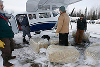 Saturday February 20, 2010.   Volunteers help load Iditarod airforce pilot Mike Swalling's Cessna 206 plane with straw and supplies for delivery to the Skwentna checkpoint at Willow Airport.