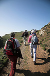 Tourists explore Skomer Island, Pembrokeshire, Wales
