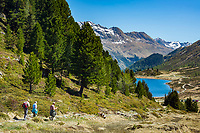 Oesterreich, Ost-Tirol: Wandern an Obersee im Defereggental unterhalb des Staller Sattel   Austria, East-Tyrol: hiking near lake Obersee in Defereggen Valley, below Staller Sattel passroad