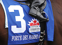 Scenes from around the track on Canadian International Stakes Day on October 14, 2012 at Woodbine Racetrack in Rexdale, Ontario, Canada.  (Bob Mayberger/Eclipse Sportswire)