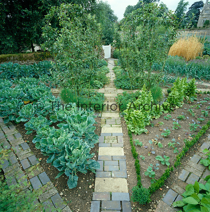 The vegetable garden has been designed as a formal parterre and planted with cabbage, lettuce and fruit trees
