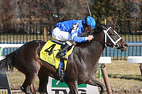 It's Tricky with Ramon Dominguez win the Grade II Top Flight Handicap at 1 1/16 mile, for fillies & mares, 3 year olds and up, at Aqueduct Racetrack. Trainer Kiaran McLaughlin. Owners - Godolphin Racing.