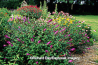"63821-065.19 Butterfly Bushes, Blazing Star, Purple Coneflowers, Red Bee Balm, Black-eyed Susans (Rudbeckia hirta ""Goldstrum"") IL"