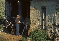 Europe/France/Midi-Pyrénées/46/Lot/Vallée de la Dordogne/Carennac: Allaitement des agneaux au biberon<br /> PHOTO D'ARCHIVES // ARCHIVAL IMAGES<br /> FRANCE 1980