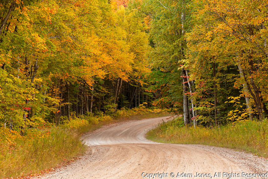 Gravel road through Hiawatha National Forest, Upper Peninsula of Michigan.