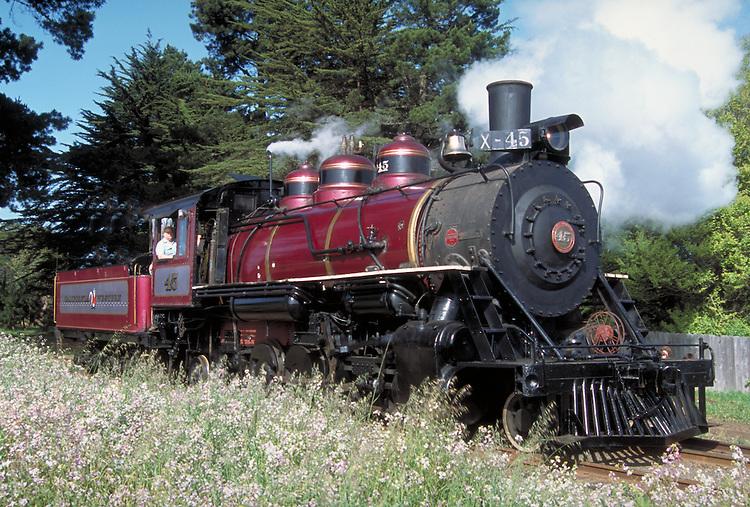Skunk train steam engine #45 on it's maiden trip after being rebuilt