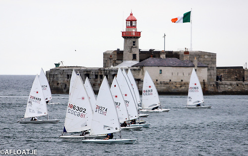 Lasers away! With DBSC dinghy racing brought back within the harbour, the Lasers came into their own