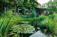 Naturgarten mit Teich, Gartenteich