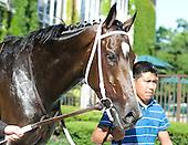 Rachel Alexandra - Mother Goose Stakes - Belmont Park - 06-27-09