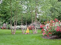 Child, walking in a summer garden, New Jersey