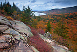 Autumn colors blanket the valley floor below the South Bubble in Acadia National Park, Maine, USA