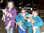 Emma, Sarah and Louise Likeman who visited the new born lambs at Newgrange Farm. Photo:Colin Bell/pressphotos.ie